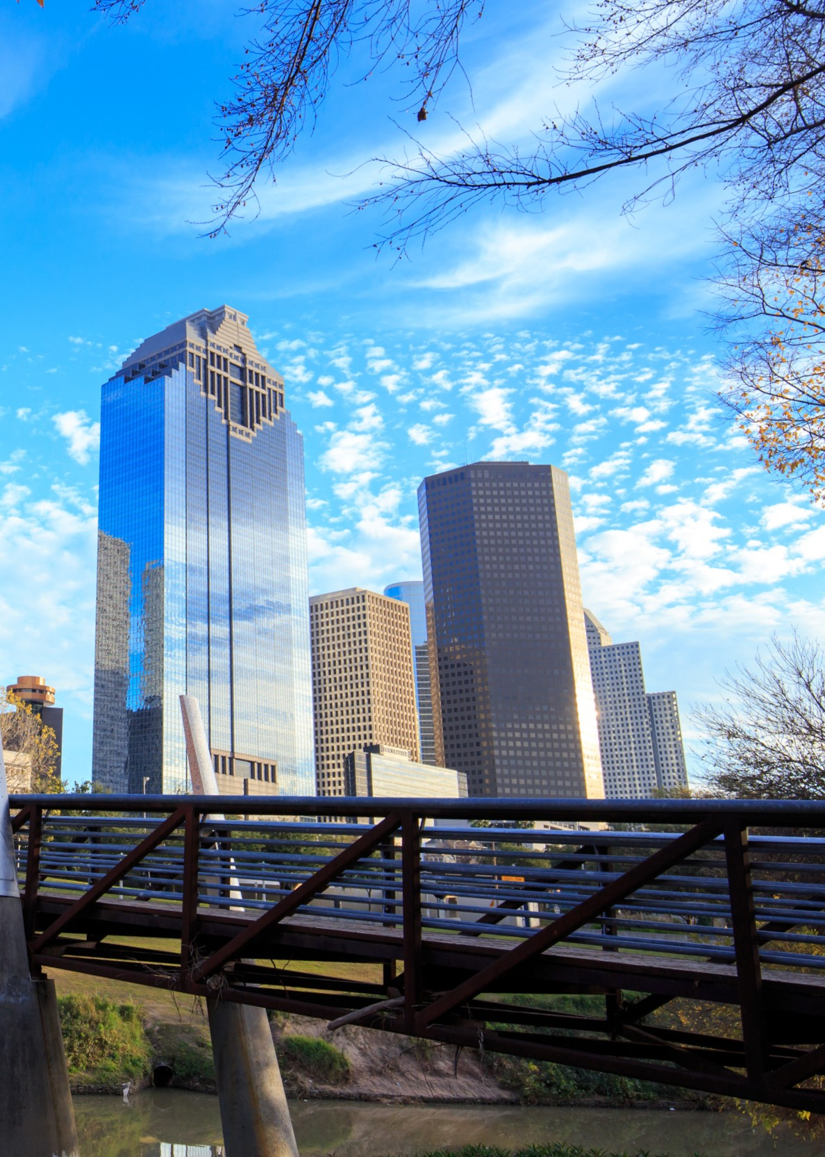 Houston Texas Skyline with modern skyscrapers and blue sky view from park